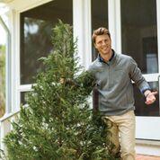 Southern Tide Sweater Christmas Tree.jpeg